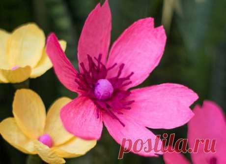 Как сделать цветы из гофрированной бумаги. Цветы из гофрированной бумаги смотрятся очень живописно. Такой милый жёлтый полевой цветочек...