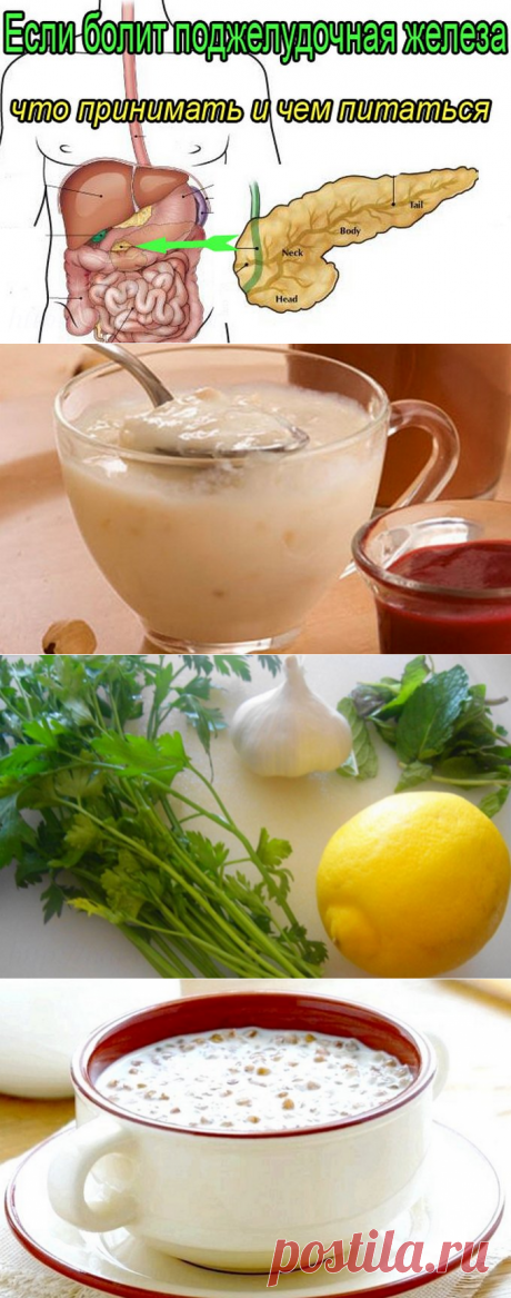 4 simplest and effective recipes for treatment of a pancreas which doctors hold back.   Aydama   At us Always the best