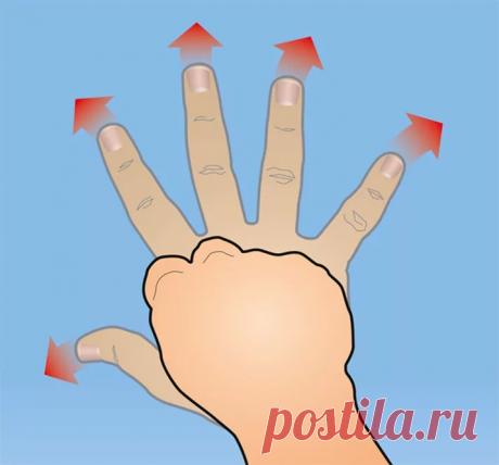 Сохраняю здоровье сердца и сосудов просто сжимая и разжимая руки | health & beauty | Яндекс Дзен