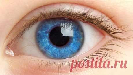 За пару недель зрение возвращается на 100% — ДОМАШНИЕ