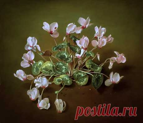 Цветы Jose Escofet. Часть 4.