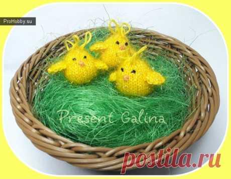 Маленькие цыплята спицами / Вязание игрушек / ProHobby.su | Вязание игрушек спицами и крючком для начинающих, мастер классы, схемы вязания