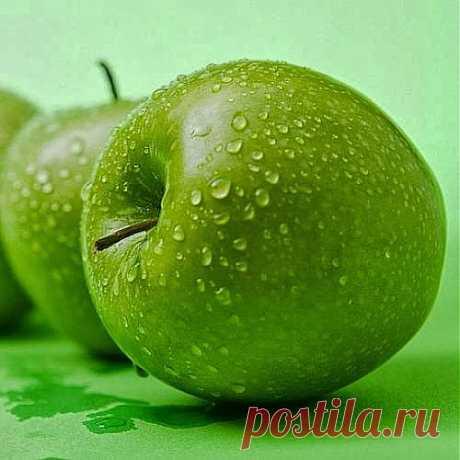 Яблочный компот килограммы уведет | Друг пенсионера