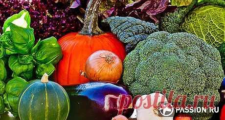 Как похудеть осенью | passion.ru
