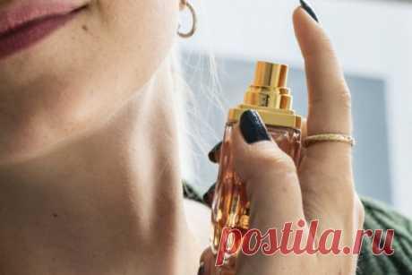 Секреты стойкости парфюма: как выбрать, куда и как наносить   CityWomanCafe.com
