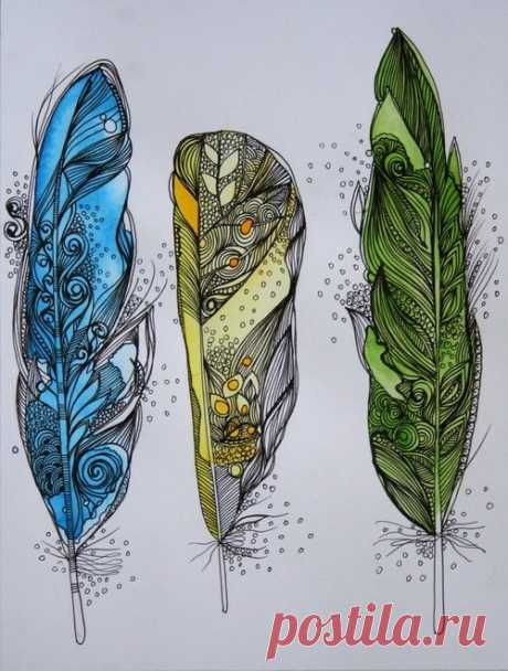 Feathers. can use as the packaging of the box...