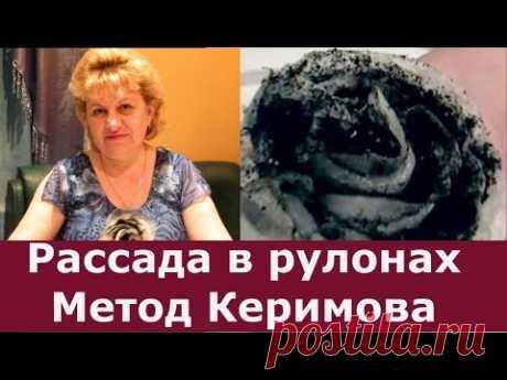 Метод Керимова! Посев семян в рулоны на рассаду. Метод самокрутки или рассада по-московски