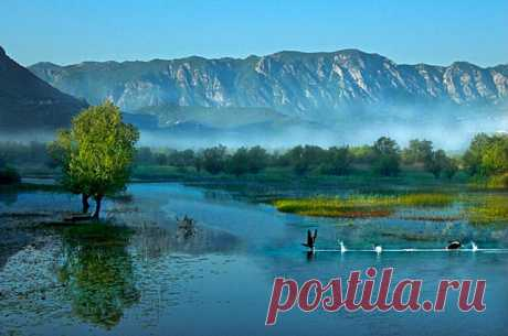 7 мест, которые стоит увидеть в Черногории - Tochka.net: Любоваться природой езжайте на Скадарское озеро, а на Святом Стефане отдохните как звезды