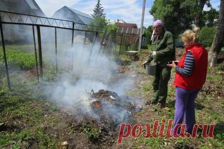 Как сжигать мусор на даче в 2019 году по закону и без штрафных санкций | 6 соток
