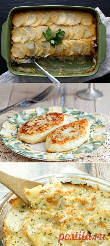 Простые блюда из картошки: 20 рецептов на каждый день. Новости Днепра
