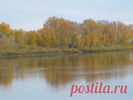Золотая осень на берегу Иртыша