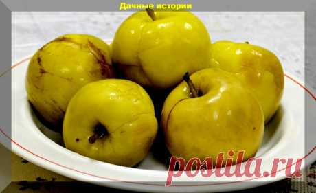 Моченые яблоки по-новому: без бочки и соломы! Секрет вкусных и полезных моченых яблок, груш, слив и вишен   Дачные истории   Яндекс Дзен