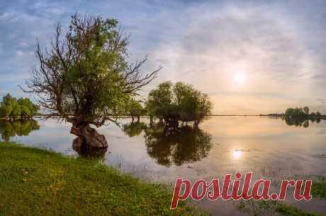 La inundación primaveral, la región De Povolzhya inferior, la región de Astraján. El autor – Fiodor Lashkov: nat-geo.ru\/photo\/user\/27510\/