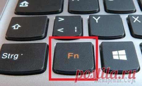 Не работает клавиша Fn на ноутбуке — что делать
