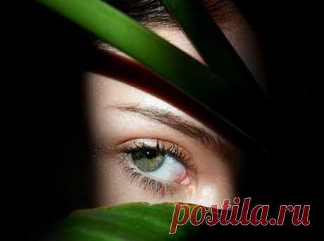 Как избавиться от синяков под глазами / Все для женщины