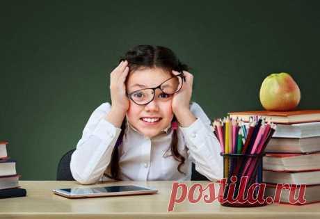 4 способа максимально прокачать мозг школьника / Малютка
