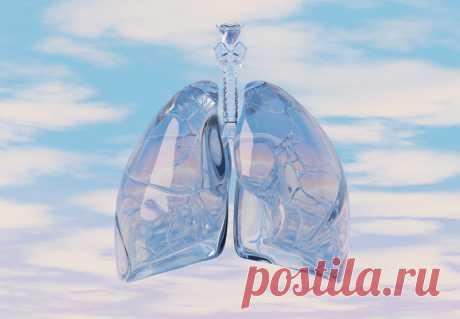 Упражнения «Дыхание долголетия»   Всегда в форме!