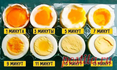Варим яйца на любой вкус)
