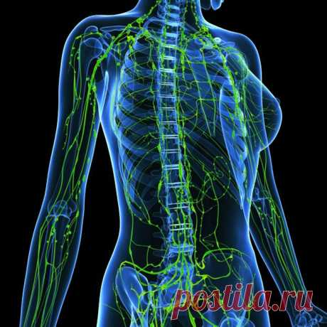 It is very important! It is impossible to allow stagnation of a lymph.