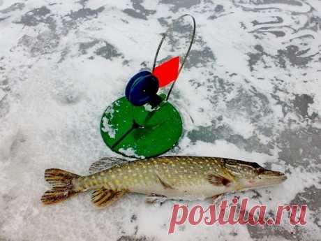Простая дедовская зимняя жерлица приносит больше улова, чем новомодные   Страсти по рыбалке   Яндекс Дзен