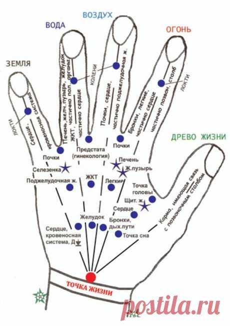 САМОМАССАЖ ТОЧЕК НА КИСТЯХ РУК - Копилка советов на каждый день - медиаплатформа МирТесен Если побаливает сердце - кусайте ноготь мизинца. Самомассаж кистей рук принесет много пользы - он оказывает благотворное влияние на работу внутренних органов. Так, массаж большого пальца стимулирует деятельность головного мозга и тонизирующее действуют на весь организм. Массаж указательного пальца