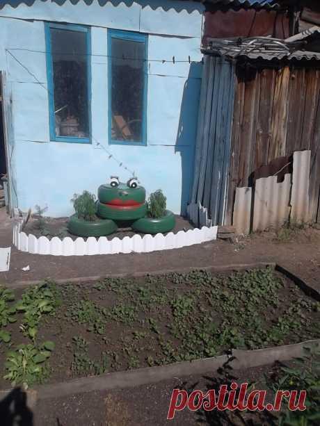 лягушка в огороде