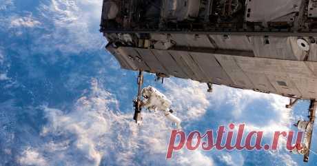 Как космонавты живут на МКС Нам удалось лично поговорить с космонавтом и спросить его о том, как же на самом деле все устроено на МКС.