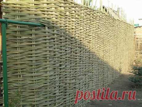 Плетение забора из ивовых прутьев