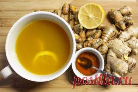 Drink and grow thin: as it is correct to use ginger to grow thin By the nature people are very lazy and often do not want to use the efforts to receive desirable result. It concerns also weight loss. There is a wish, is tasty, to lie on a sofa and to grow thin. Sounds as that...