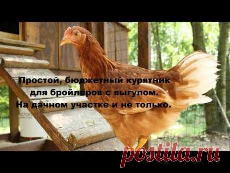 Курятник на лето своими руками для сада и дачи | Курочка | Яндекс Дзен