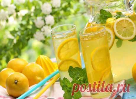 Поиск на Постиле: домашние лимонады