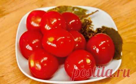 Чем проще, тем вкуснее: соленые помидоры на зиму