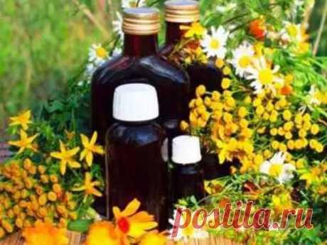 Рецепты с растительными маслами для лечения суставов и язвы - Народная медицина - медиаплатформа МирТесен