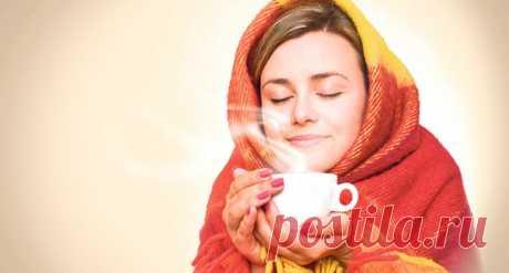 Лучшие народные средства для лечения простуды