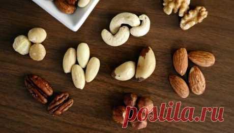 Орехи – важнейший продукт питания для пожилых
