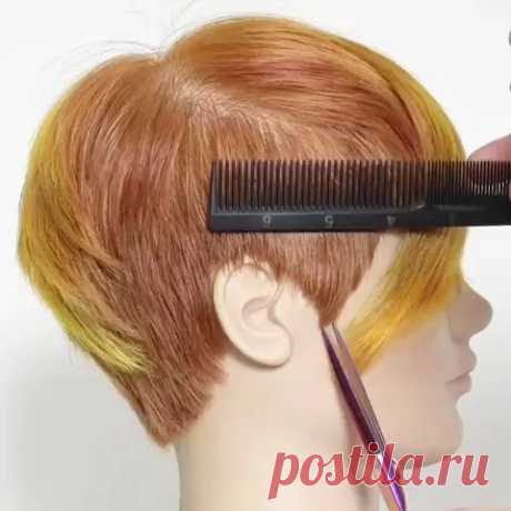 [Video] I use the comb to press the hair down for extra control, then carefully shallow point cut to create a round perimeter. Try this technique after you layer your pixie cuts to create a beautiful edge. ❤ #hairvideos #hairtutorials #haireducation  #hairvideo #haircut #haircuts #hairtips #haircutvideo #haircutting  #hairvid #hairtrends #hairhowto #haircuttutorial  #haireducator #haircutstyle  #howtodohair #hairtutorial #layeredhaircut #drycut #shorthair #shorthaircuts #b...
