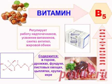 Витамин В5 в таблетках, ампулах. Инструкция по применению, для чего нужен организму, где купить, цена