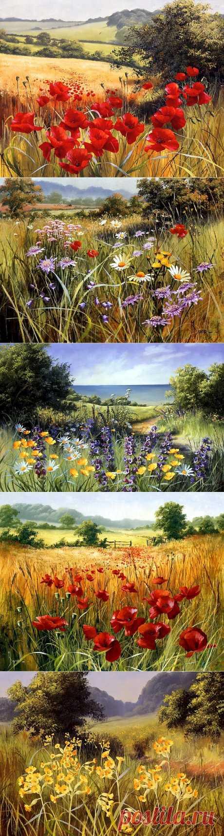 Английская художник-самоучка Mary Dipnall | Полевые цветы,полевые, Разноцветье средь трав и росы....
