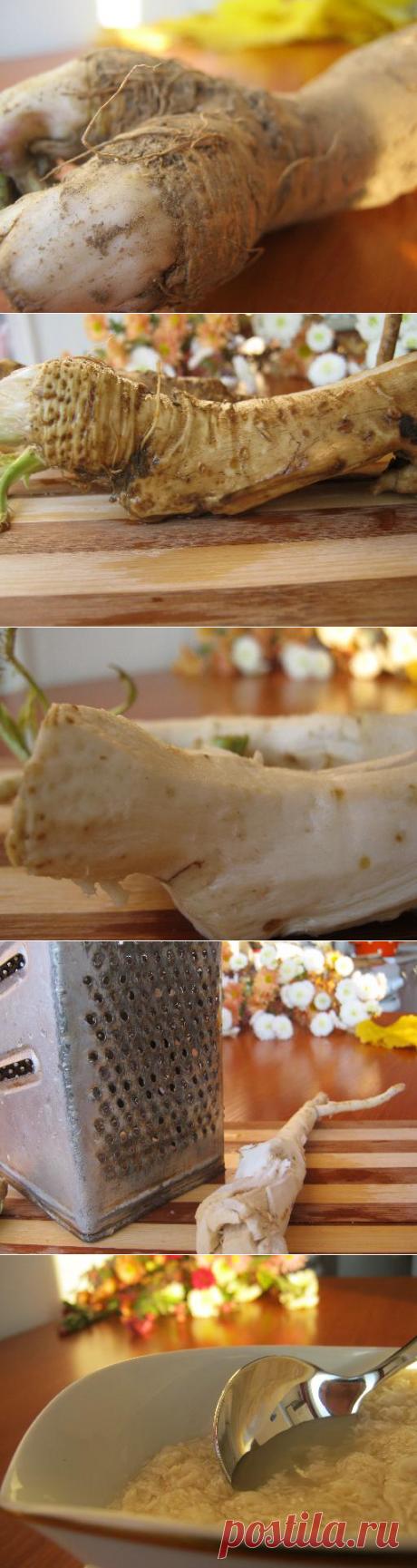 El condimento mordaz — el rábano silvestre
