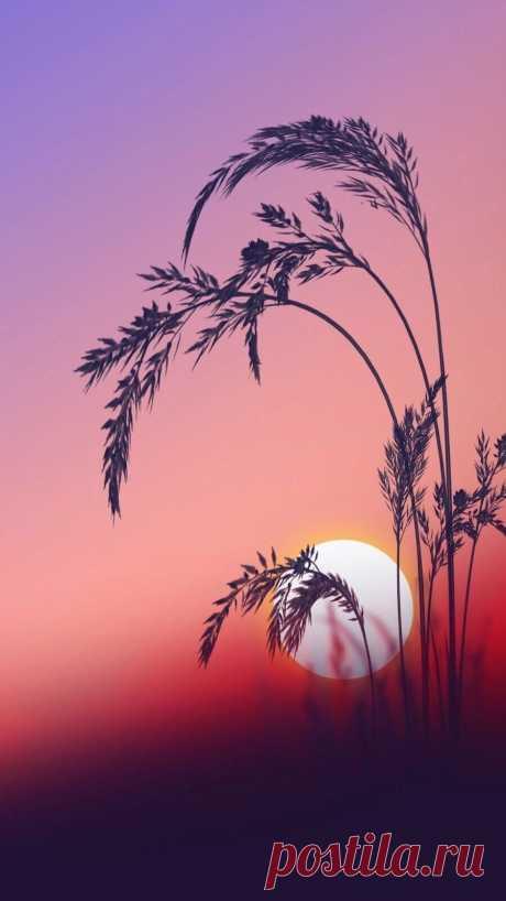 ღСПОКОЙНОЙ НОЧИ, ДОРОГИЕ! завтра будет новый день....   ...всегда будет ненаписанное  и останется недосказанное,  и будет не всеми услышанное,  укрытое, непоказанное...   ©