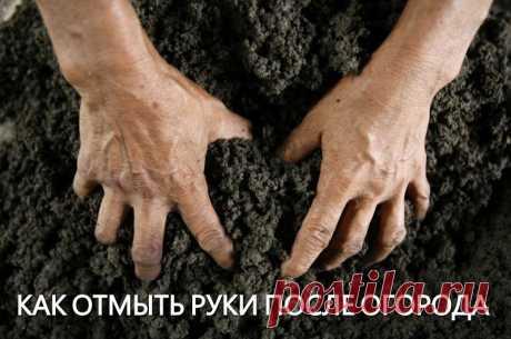 Как отмыть руки после огорода.