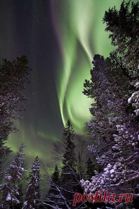 Это Мурманск  северное  сияние