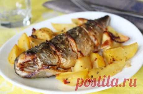 Скумбрия, запеченная с картошкой в духовке: простые рецепты вкусного блюда - Onwomen.ru