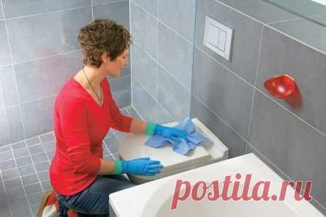 4 простых способа поддержания туалета в чистоте.   OK.RU