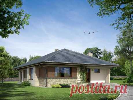 Проект одноэтажного дома без гаража ASTER купить в Минске на Territoria.by