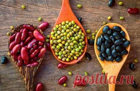 10 продуктов, снижающих уровень холестерина в организме