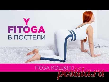 FITOYOGA В ПОСТЕЛИ | Поза кошки 1 | Марджариасана 1 | Фитнес и йога дома