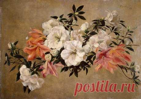 Henri Fantin-Latour (1836 - 1904)  Petunias 1881 Hermitage, St. Petersburg