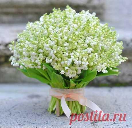 Утро доброе ,Мир!!! Счастливого дня!!!! Пусть в Вашей жизни всегда светит солнышко!!!:)