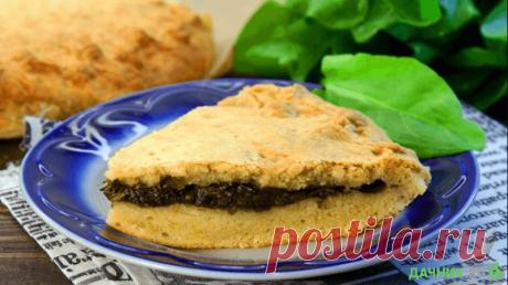 Пироги и пирожки со щавелем: лучшие рецепты